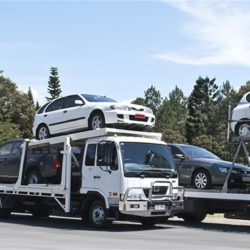 Vitality and Benefits of Car Transport Services
